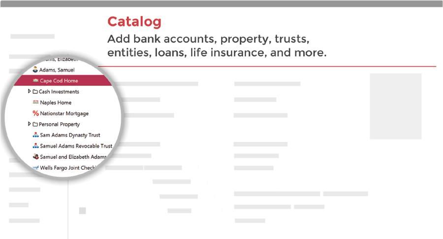 catalog assets